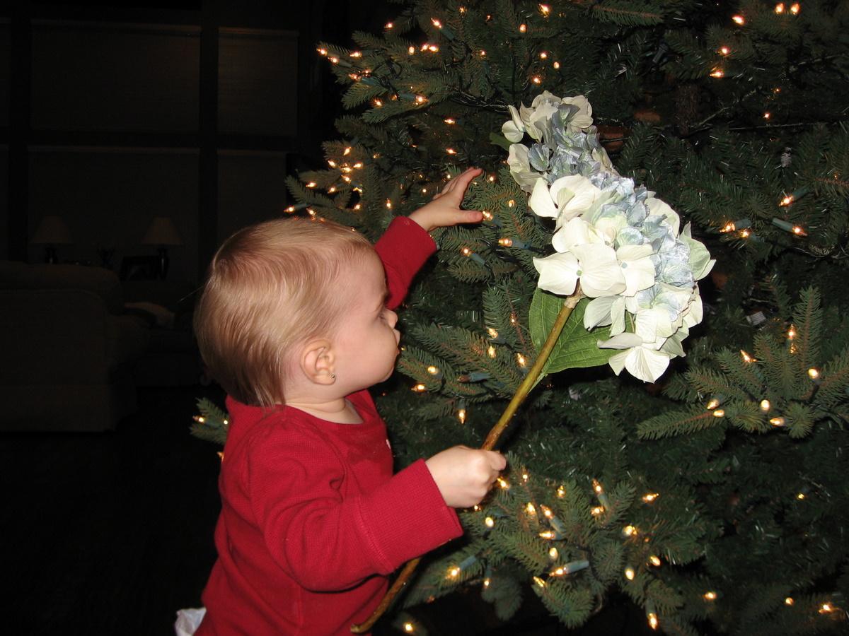 christmas-tree-2007_06.JPG