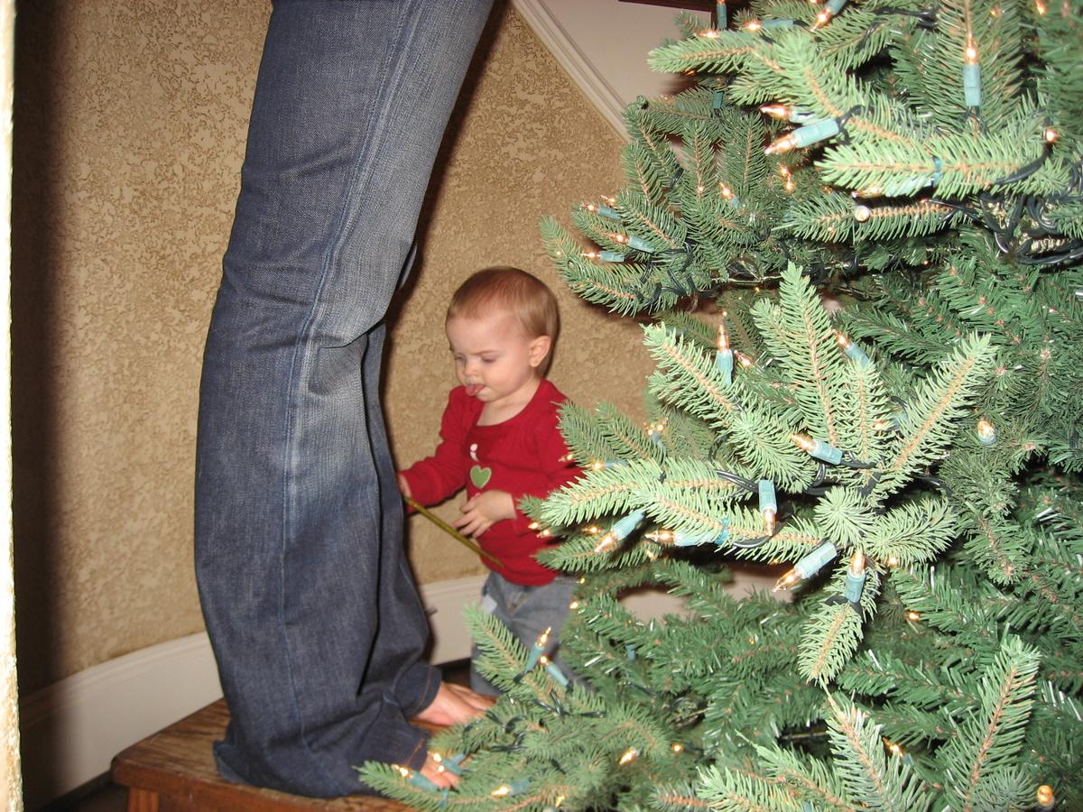 christmas-tree-2007_09.JPG