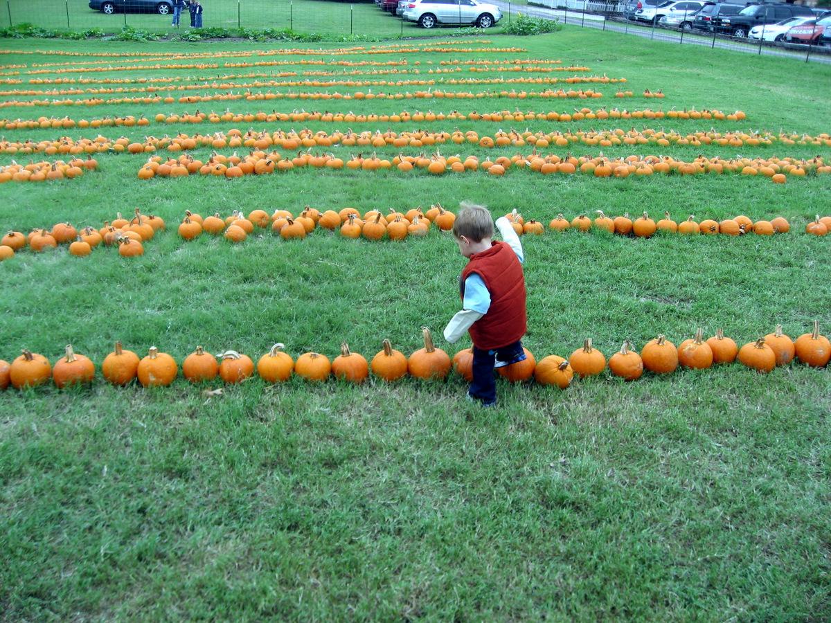 josh-1-year-10-10-2009-12-16-40-pm.JPG