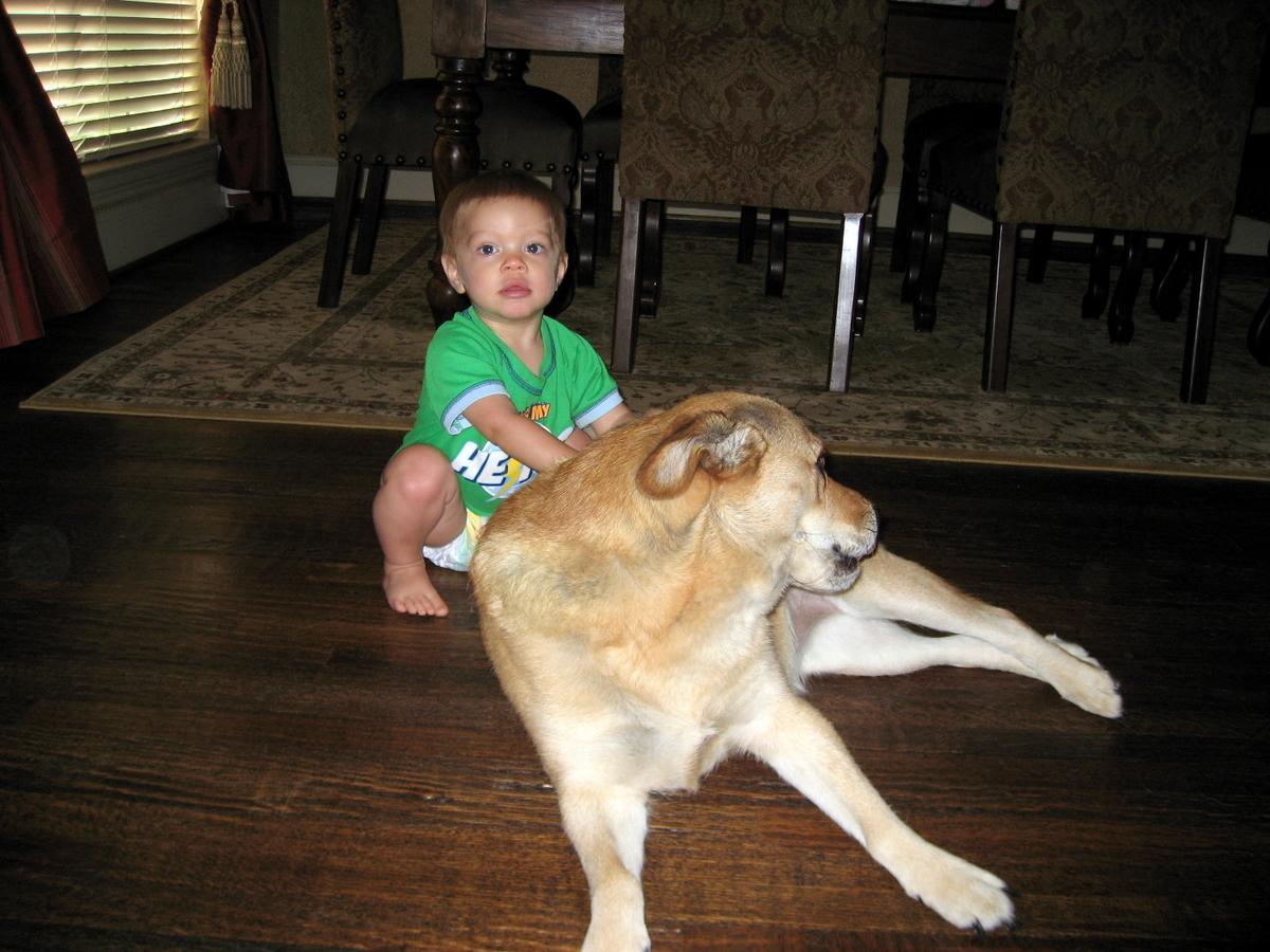 joshua-13-months-7-25-2009-4-07-42-pm.JPG